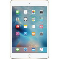 Ipad mini4 32 Go